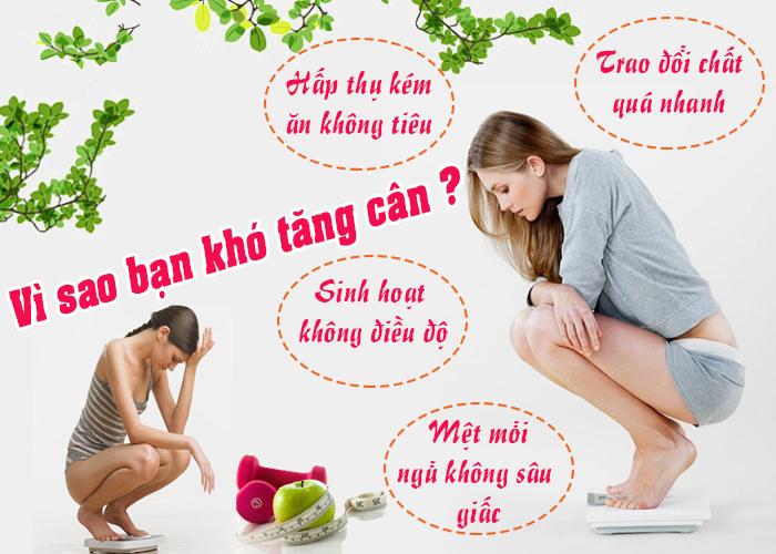 tang can voi cao ban long